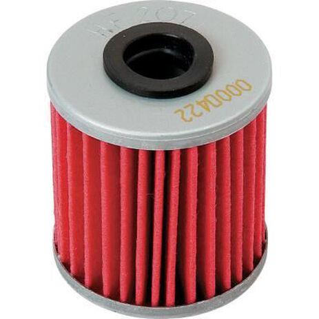 _Filtro Olio Hiflofiltro CRF 250 04-18 CRF 450 02-18 Husqvarna TE 250 10-14/TE 310 11-14 | HF116 | Greenland MX_